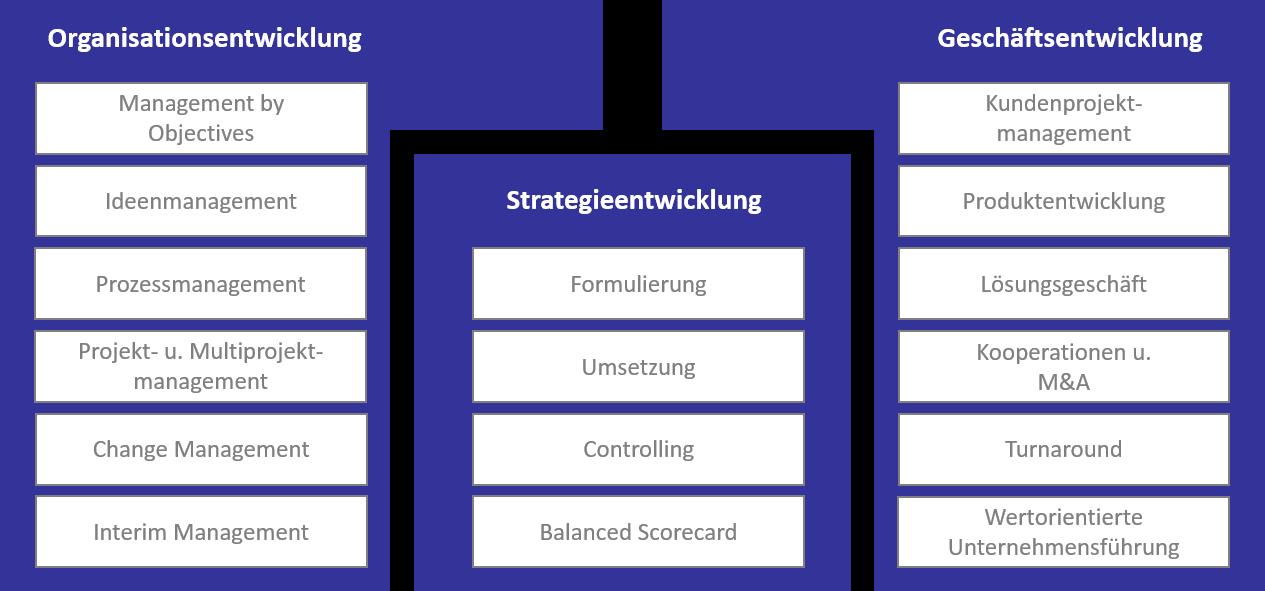 Organisationsentwicklung, Strategieentwicklung, Geschäftsentwicklung